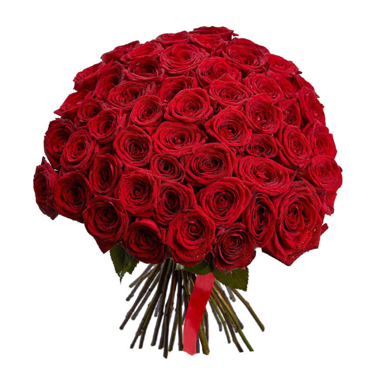 Розы Красные 51 шт