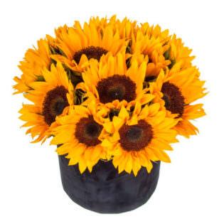 Цветы в коробке «Яркий день»